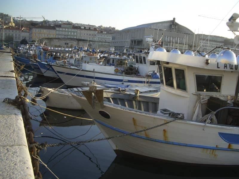 Molo Venezia Barche