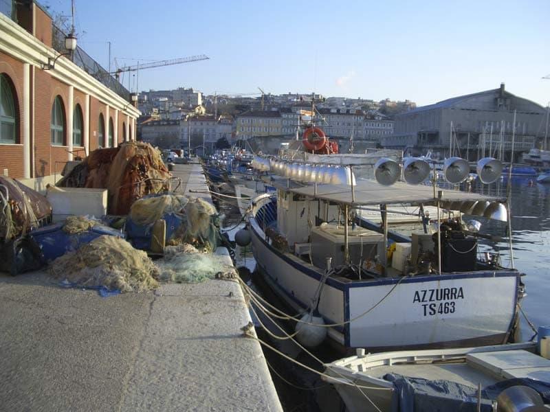 Molo Venezia, Trieste